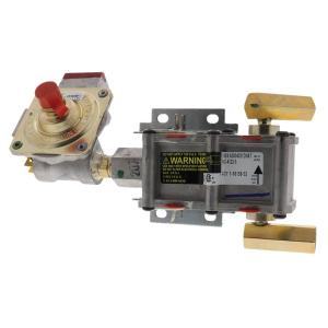 Range Replacement Elements & Accessories DG94-00449A Gas Range Assembly, Valve, and Regulator